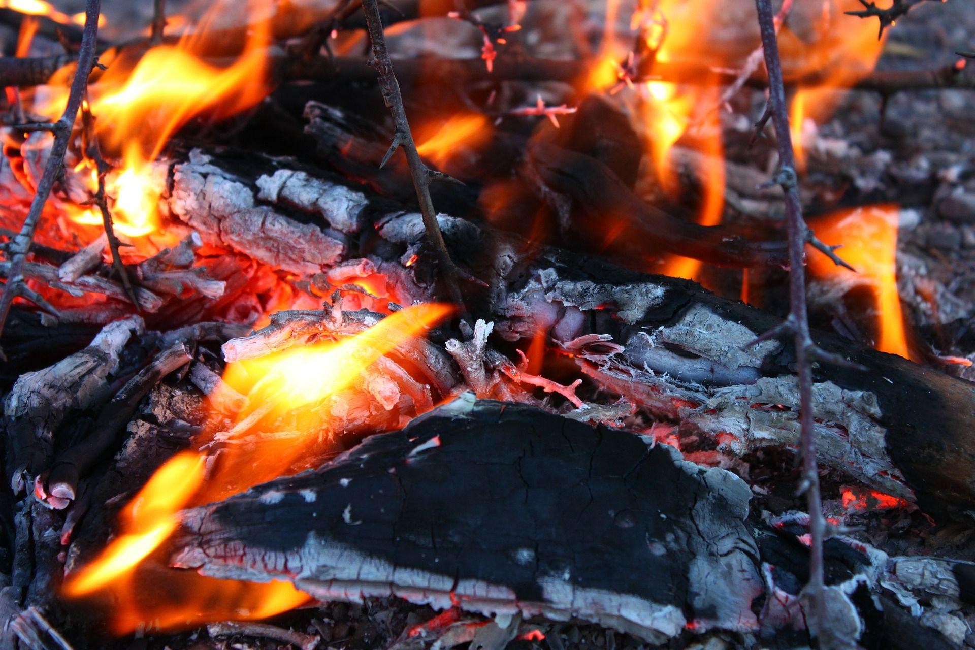 biomasa para calentar